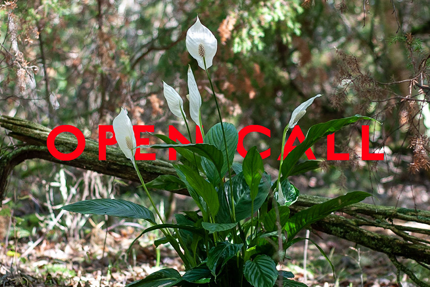 Open Call – Land404